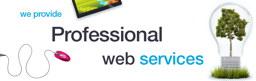 We provide professional web services