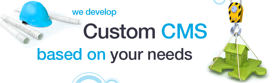 We develop custom CMS based on your needs.